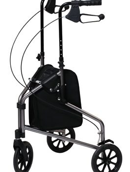 3-Wheel Cruiser